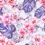 Seamleass pattern made of pink orchid flowers with contours and large puple monstera leaves on light lilac background. Watercolor painting. Hand drawn Stock Photo