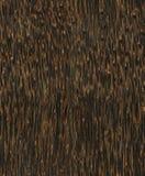 seamlees texture drewnianego obrazy stock
