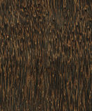 Seamlees wooden texture Stock Images