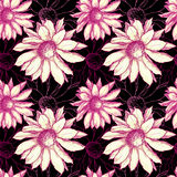 Seamles flower pattern. Seamless flower background in rose and black colors Stock Photography