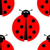 Seamles Ladybug Royalty Free Stock Photo