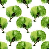 Seamles pattern of green watercolor willow on white background. Seamles pattern of green watercolor willow on white royalty free stock photos