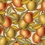seamless äpplebakgrund Arkivbild