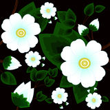 Seamless abstract background with beautiful white flowers Stock Photo