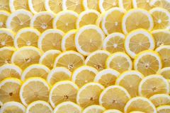 Seamless abstract background of sliced lemon. Stock Images