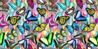 Seamless abstract colorful background with butterfly vector illustration