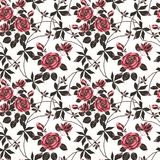 Seamless abstract   floral pattern . Red roses on light background. Stock Photography