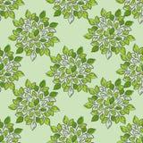 Seamless abstract green leaf pattern, foliage. floral Mandala. Vector Illustration doodle kids style design.Organic vector illustration