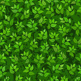 Seamless abstract green leaves background Royalty Free Stock Photo