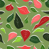 Seamless abstract hand-drawn pattern of leaves and flowers plant. Vector red poinsettia Christmas flower Royalty Free Stock Photography