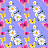 Seamless abstract pattern with Camomiles and Butterflies Royalty Free Stock Photos