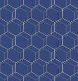 Seamless Abstract Pattern With Hexagons. Geometric fine abstract hexagonal background. Seamless modern pattern. Blue and golden pattern Royalty Free Stock Image