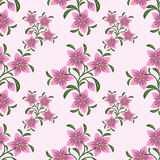 Seamless abstract Pattern with pink Flowers Royalty Free Stock Image
