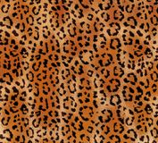 Seamless abstract pattern on a skin leopard texture, snake. royalty free stock photos