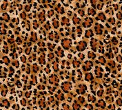 Seamless abstract pattern on a skin leopard texture, snake. royalty free stock photo