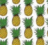 Seamless ananas mönstrar Arkivfoton