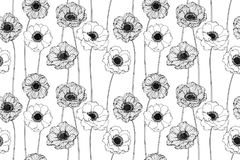 Seamless Anemone flower pattern background. Black and white with drawing line art illustration royalty free illustration