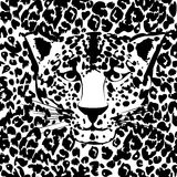 Seamless animal fur pattern vector. Cheetah, leopard tiger head skin texture Stock Photos
