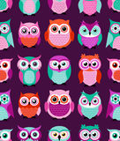 Seamless animal owls pattern Stock Image