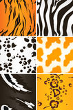 Seamless Animal patterns Royalty Free Stock Photography