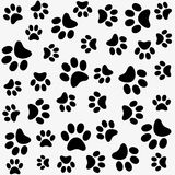 Seamless animal paw footprint Stock Photography