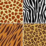 Seamless animal print Royalty Free Stock Photography