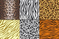 Seamless Animal Prints. Leopard Tiger Zebra Skin Patterns, Texture Stripes Backgrounds. Vector Africa Animals Different Royalty Free Stock Image