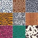 Seamless animal skin pattern. Seamless colorful animal skin pattern set Royalty Free Illustration