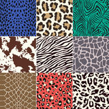 Seamless animal skin pattern Royalty Free Stock Photo