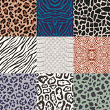 Seamless animal skin pattern Royalty Free Stock Photography