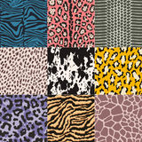 Seamless animal skin pattern Royalty Free Stock Images