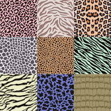 Seamless animal skin pattern Stock Image