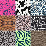 Seamless animal skin pattern Stock Photography