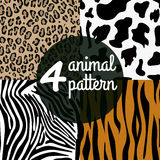 Seamless Animal Skin Pattern set Royalty Free Stock Photography