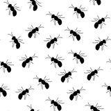 Seamless ant pattern Royalty Free Stock Photos