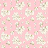 Seamless apple flowers background. Stock Images