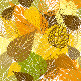 Seamless autumn background. Seamless autumn leaves colorful background Stock Photos