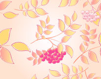 Seamless autumn background with leaves and rowan Royalty Free Stock Image