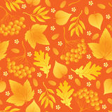 Seamless autumn background Royalty Free Stock Photography