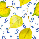 Seamless autumn background with yellow leaves and numbers Stock Photo