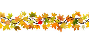 Seamless autumn branch Stock Images