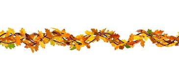 Seamless autumn branch Stock Photos