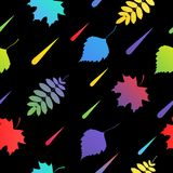 seamless with autumn colorful leaves Royalty Free Stock Images