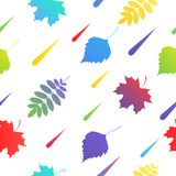 seamless with autumn colorful leaves Stock Image