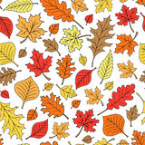 Seamless Autumn Fall Leaves Pattern Vector Stock Image