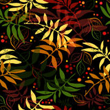 Seamless autumn floral pattern Royalty Free Stock Photo
