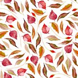 Seamless autumn floral pattern with watercolor red leaves. Hand drawn  on a white background Stock Photography