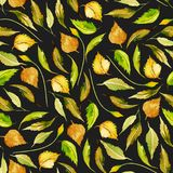 Seamless autumn floral pattern with watercolor yellow leaves. Hand drawn  on a dark background Stock Photography