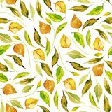 Seamless autumn floral pattern with watercolor yellow leaves. Hand drawn  on a white background Stock Image