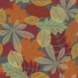 Seamless with autumn leaves Royalty Free Stock Image
